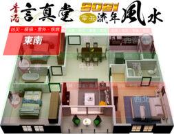 2021辛丑牛年風水 - 東南