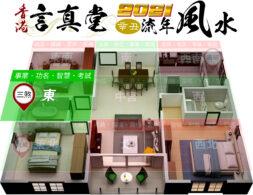 2021辛丑牛年風水 - 東